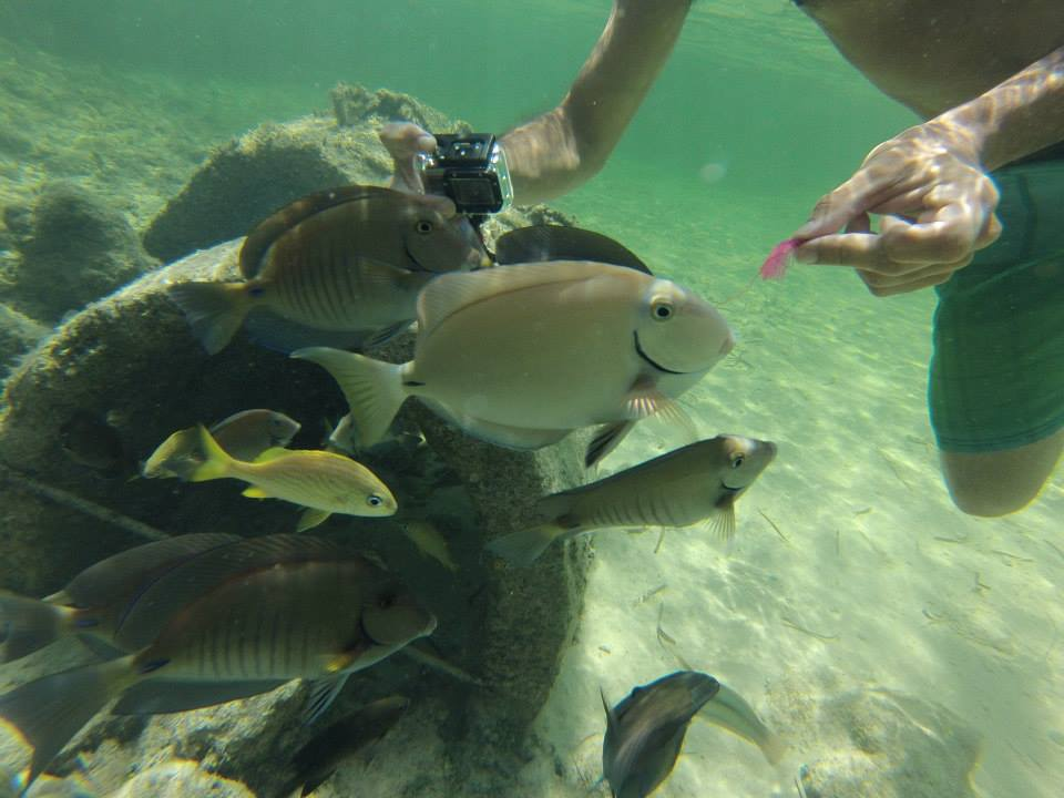 Punta Cana 3
